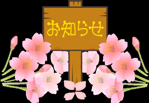 名古屋市オリア施術院桜のイラスト