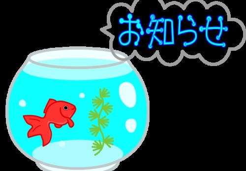 お知らせと金魚鉢のイラスト2